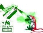 grenn-kill-rats-20120327
