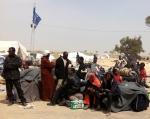 profughi-dal-razzismo-dei-ratti-libici