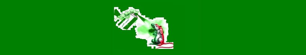 green-flag-990x180-3