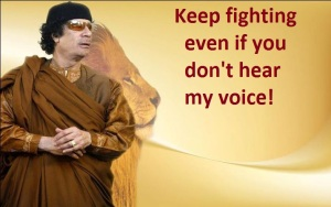 gaddafi-keep fighting-20120215